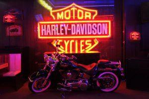 Harley Moto Show