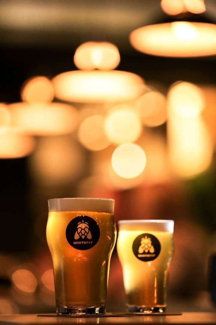 duas taças de cervejas fazem a cena na noite de Gramado